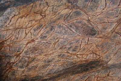 Marmură rainforest-brown